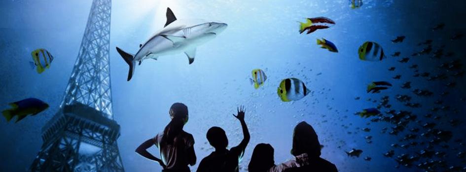 Aquarium-de-Paris-Cineaqua